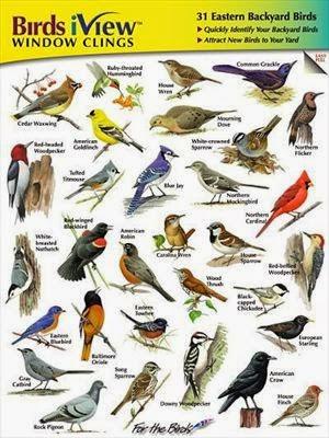 Wild Birds Unlimited: Bird ID decals for the window