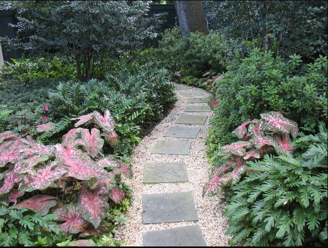 gravel and pavers path wooded shad gardening