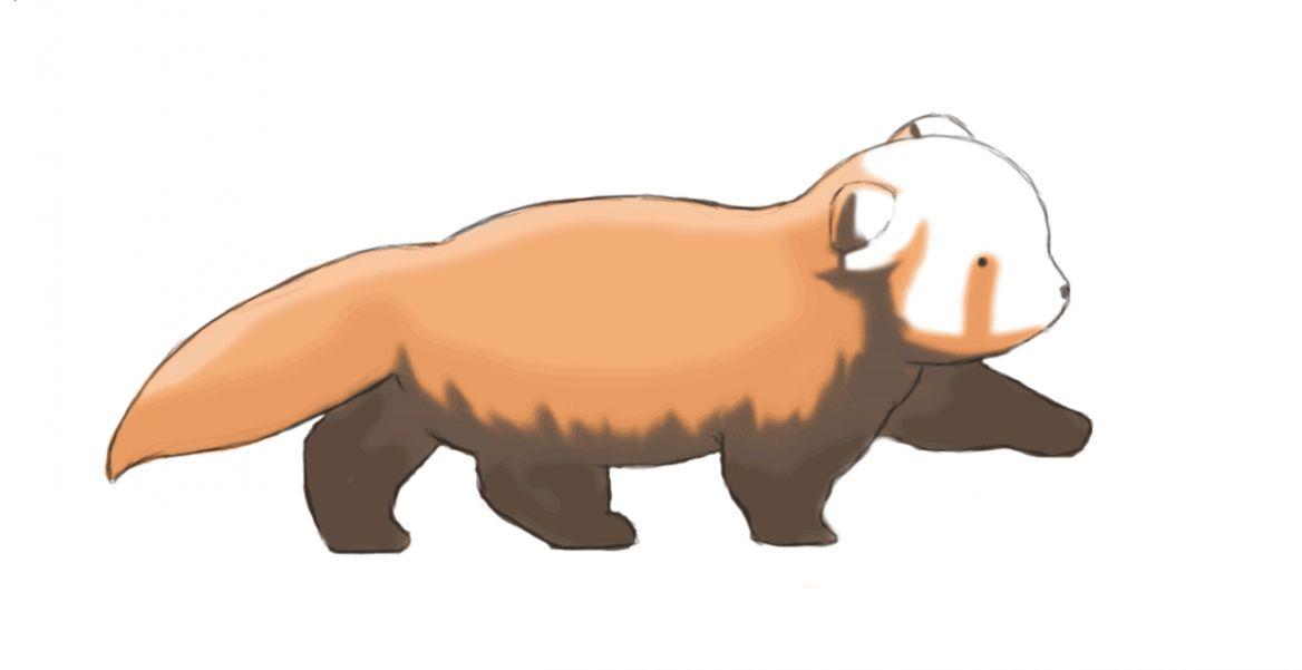Trends For Cartoon Cute Red Panda Wallpaper Images