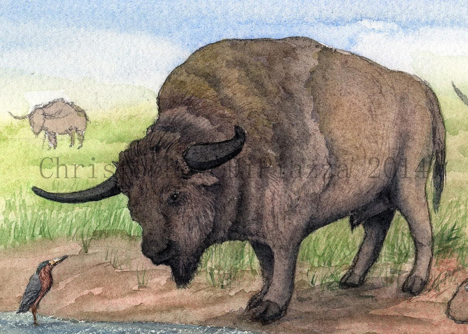 Prehistoric Beast of the Week: Giant Bison: Prehistoric ...