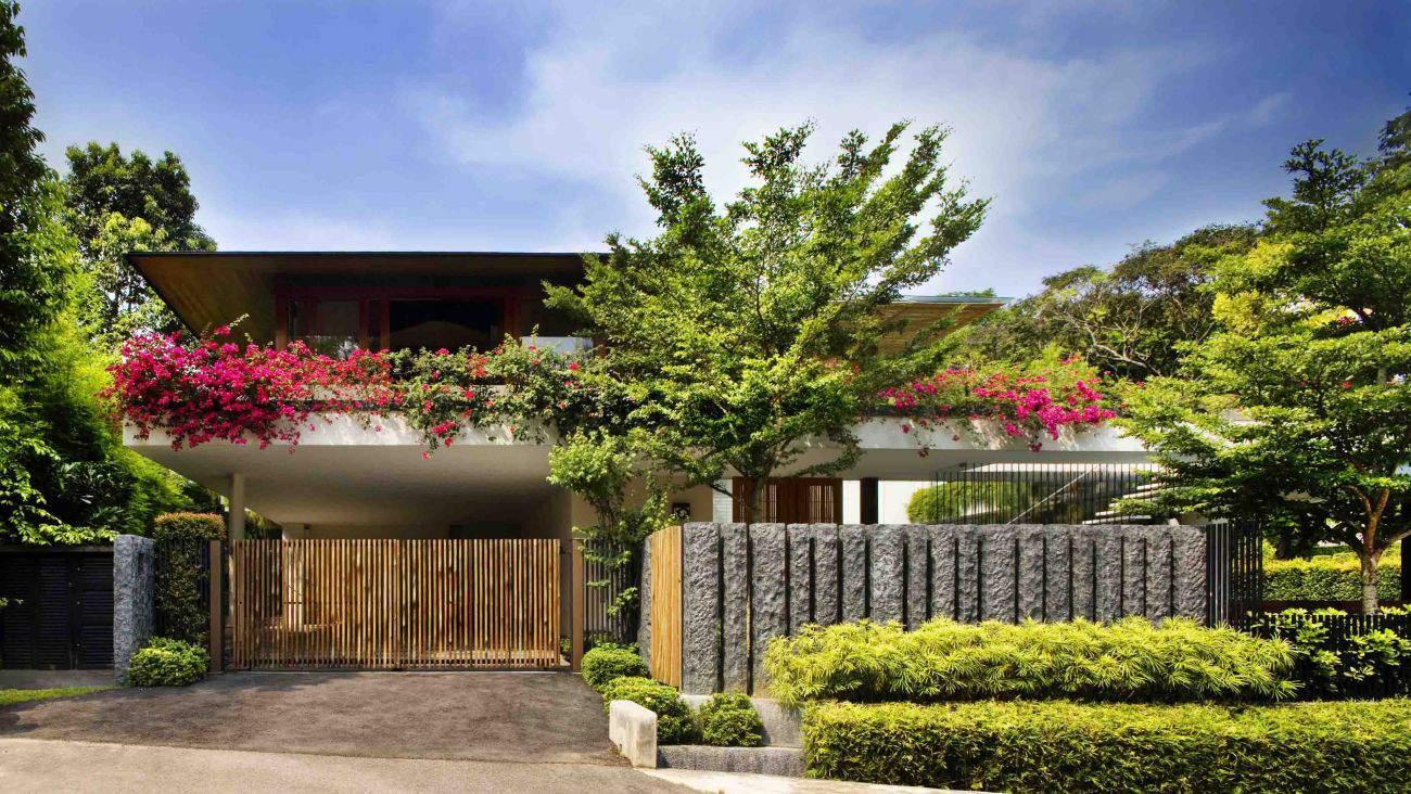 Contemporary tropical trees tanga house