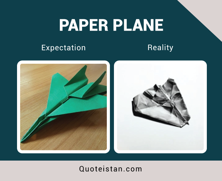 Expectation Vs Reality: Paper Plane