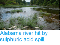 http://sciencythoughts.blogspot.co.uk/2016/08/alabama-river-hit-by-sulphuric-acid.html
