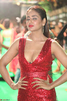 Parul Yadav in Sleeveless Deep Neck Red Gown at IIFA Utsavam Awards March 2017 066.JPG