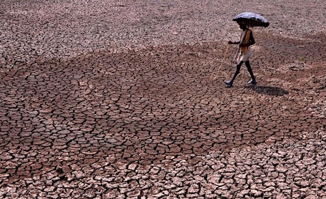 Más de 130 muertos por ola de calor en la India