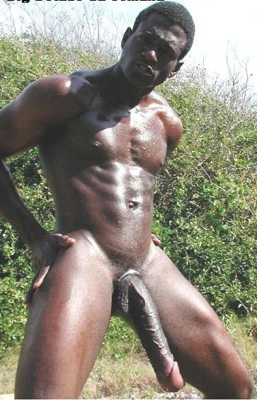 Big Black African Gay Dick