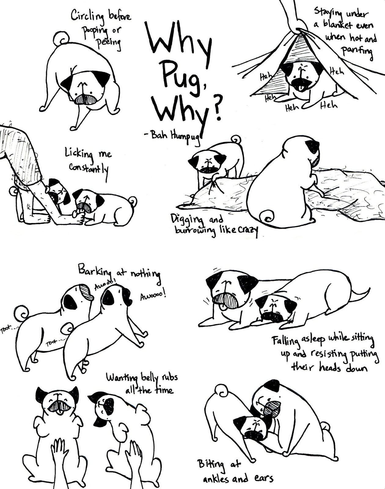 Bah Humpug: Why Pug, Why?