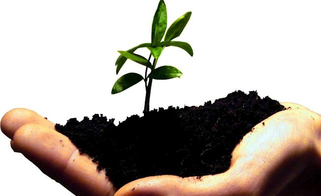 Bisnis UKM – 7 usaha kecil menengah yang menguntungkan dan bisa anda coba sekarang juga