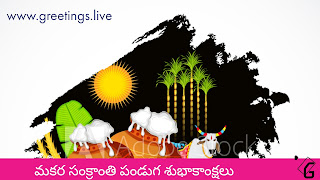 Telugu Sankranti Sambaralu Picture Messages