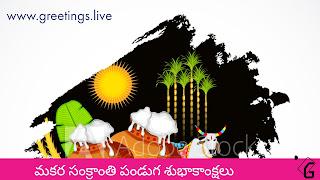 Telugu Sankranti Sambaralu Picture Messages