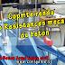 Compte rendu essai de compressibilite a l'oedometre TP MDS génie civil PDF