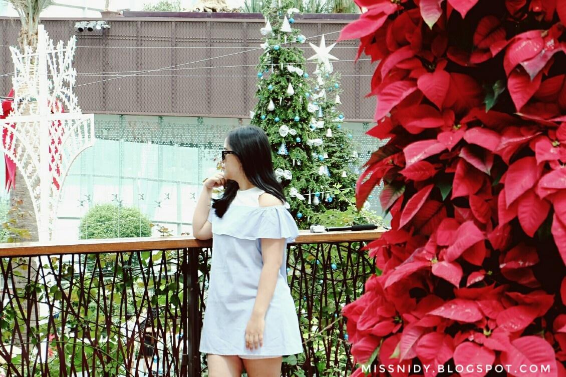Garden By The Bay Singapore Tiket Masuk Anak Flower Dome