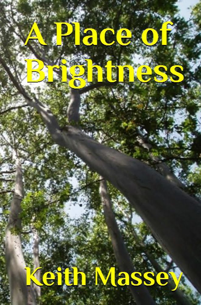 A Place of Brightness: the 1st Novel in the Valquist Series