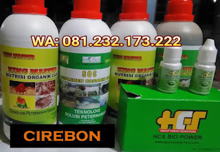 Jual SOC HCS, KINGMASTER, BIOPOWER Siap Kirim Cirebon Sumber
