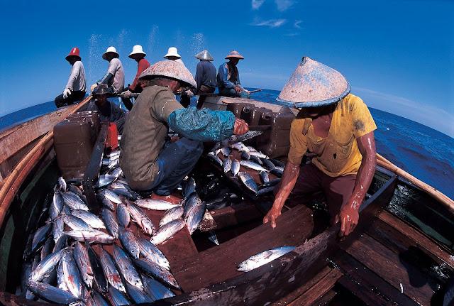 Anak muda Indonesia  didorong jadi nelayan profesional