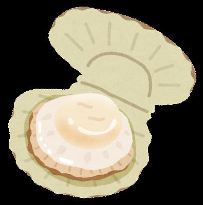 帆立貝のイラスト