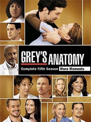 Baixar Grey's Anatomy 5ª Temporada Dublado