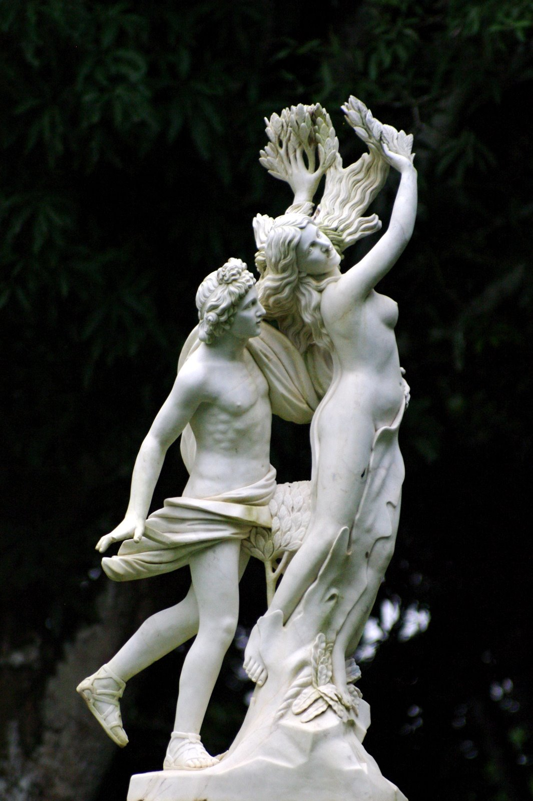 nassif s blog gian lorenzo bernini master sculptor apollo and daphne