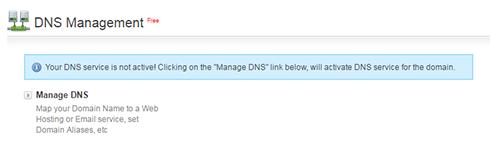 Manage DNS Option