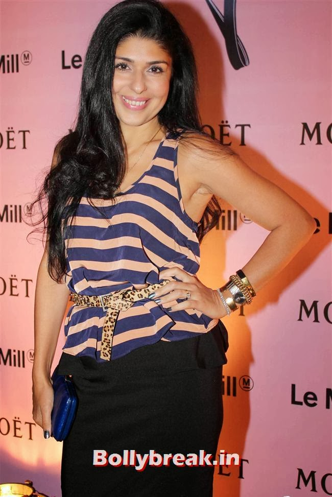 Anaita Shroff, Celebs at Moet and Chandon Valentines Day Celebrations
