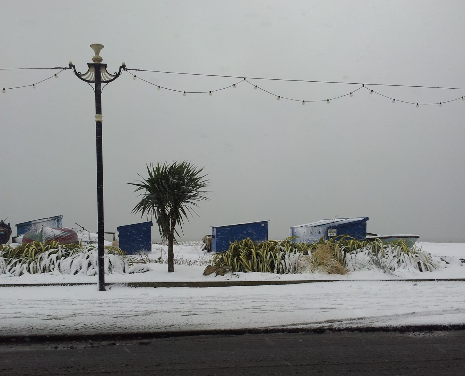 Seafront snow