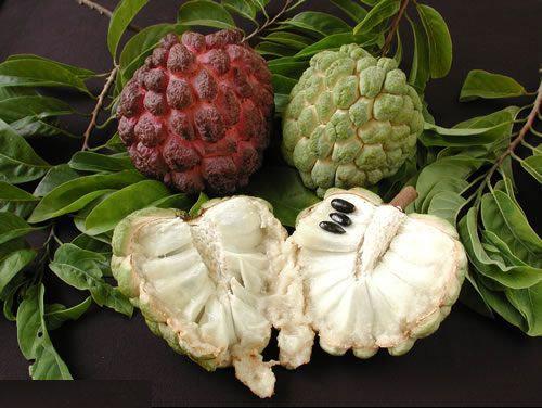 فوائد رائعة لفاكهة القشطة
