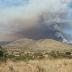Onemi decreta alerta roja en comuna de La Ligua por incendio forestal