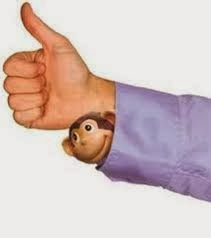 36307314ff5 Harde Woorden: KLADBLOK Nog een aap uit de mouw in Edam-Volendam