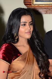 Actress Anupama Parameswaran Stills in Silk Saree with Shatamanam Bhavati Team at Sandhya Theater  0006.JPG
