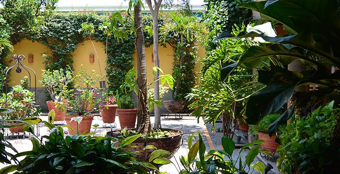 Casa De Los Patios Hotel, Jalisco, Sayula, sayula Jalisco, sayula hoteles, sayula turismo, que hacer en sayula,