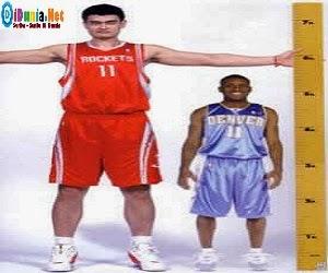 Yao Ming Segera Bergabung dengan Tim China