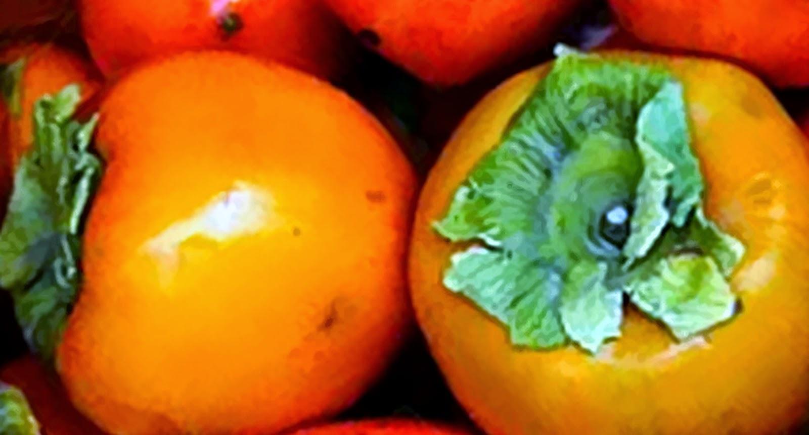 Manfaat-Buah-Kesemek-Bagi-Kesehatan-Tubuh-Ibu-Hamil-dan-Diet