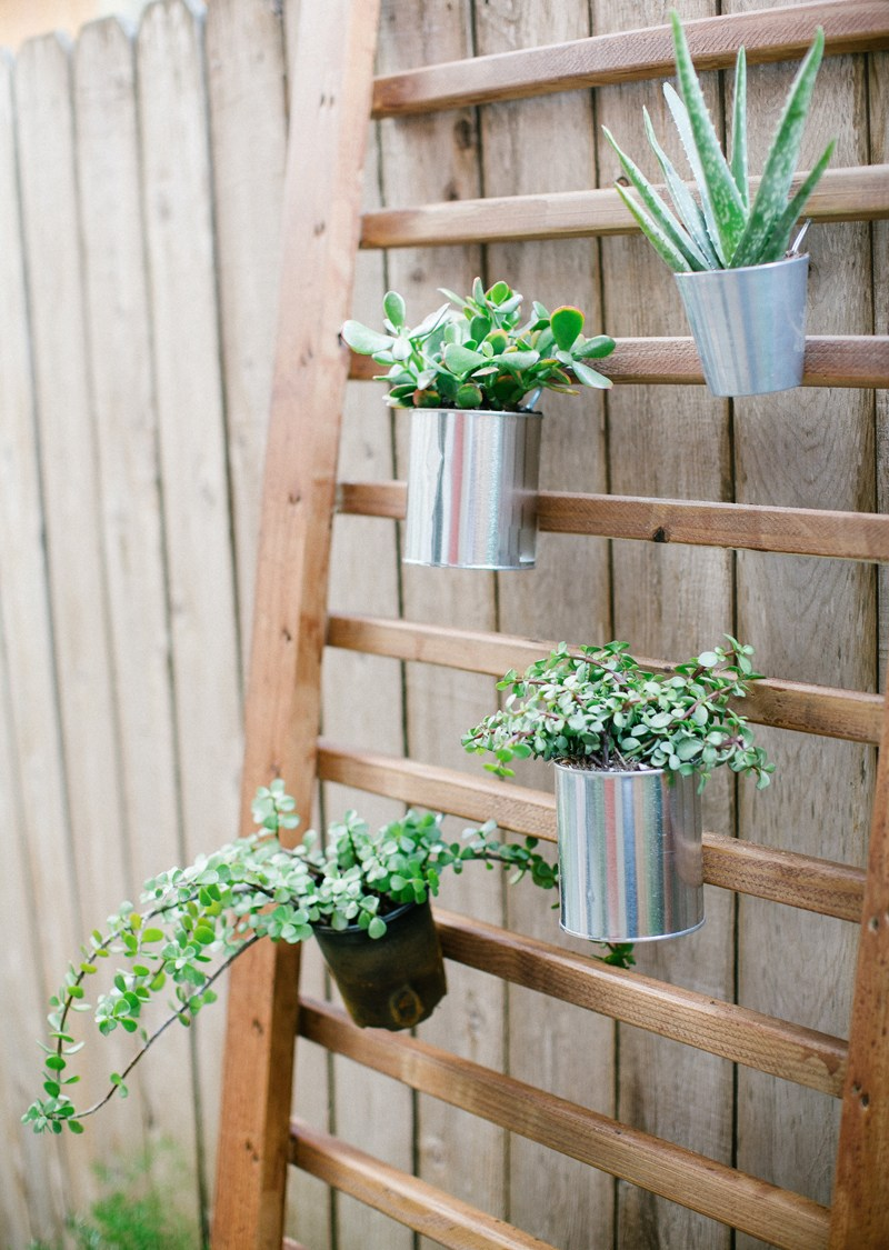 14 Ways to Display Succulents - Vertical Succulent Garden