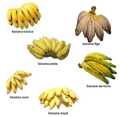 #Banana, Quantos Tipos de Bananas Existem