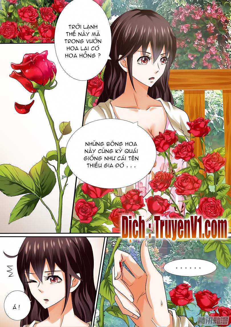 Hào Môn Tiểu Lão Bà Chap 11