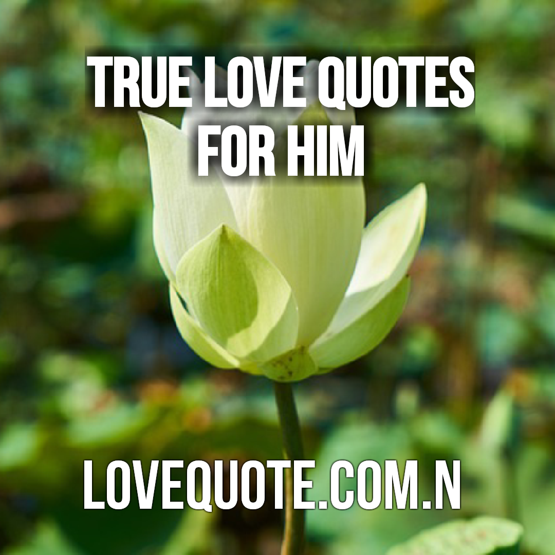 200 I Love You Quotes: True Love Quotes - Inspirational Love Quotes