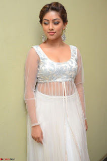 Anu Emmanuel in a Transparent White Choli Cream Ghagra Stunning Pics 058.JPG