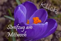 http://natural-moments.blogspot.de/2016/07/streifzug-am-mittwoch.html