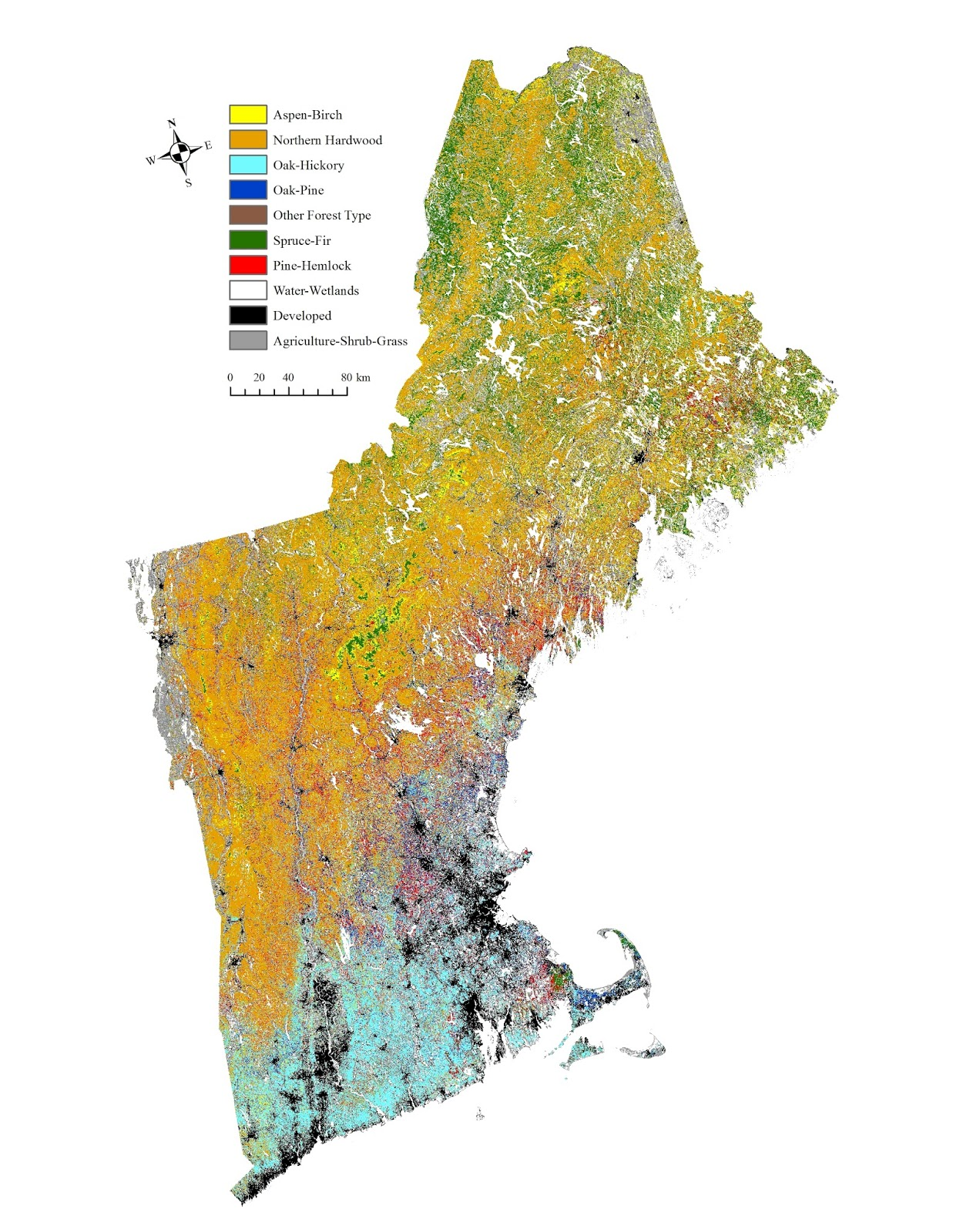 Forest types of New England
