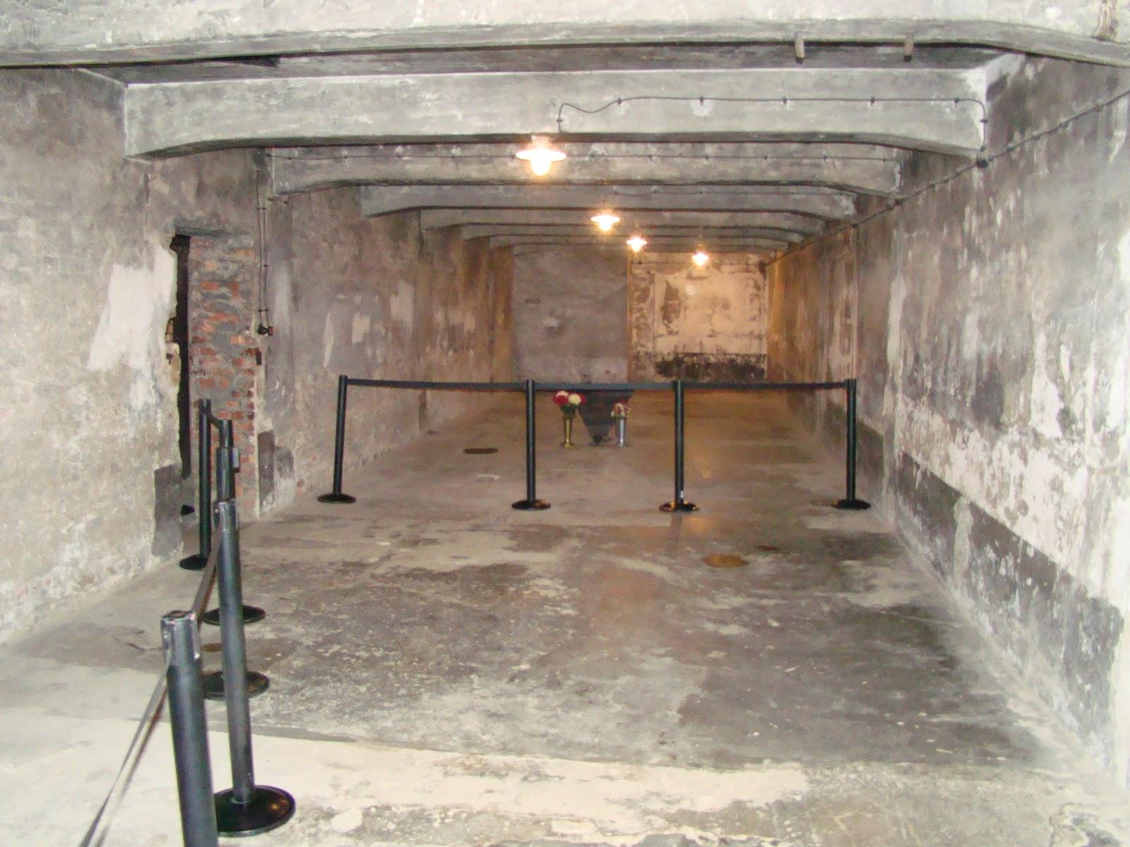 """Auschwitz 2012: Auschwitz 1: """"The Gas Chamber"""""""