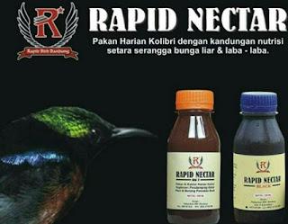 Manpaat Dan Harga Terbaru Pakan Merk Rapid Nectar Black Untuk Burung Kolibri Kesayangan Anda