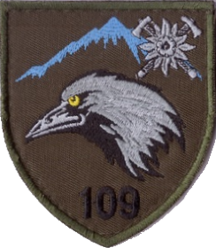 109 огшб