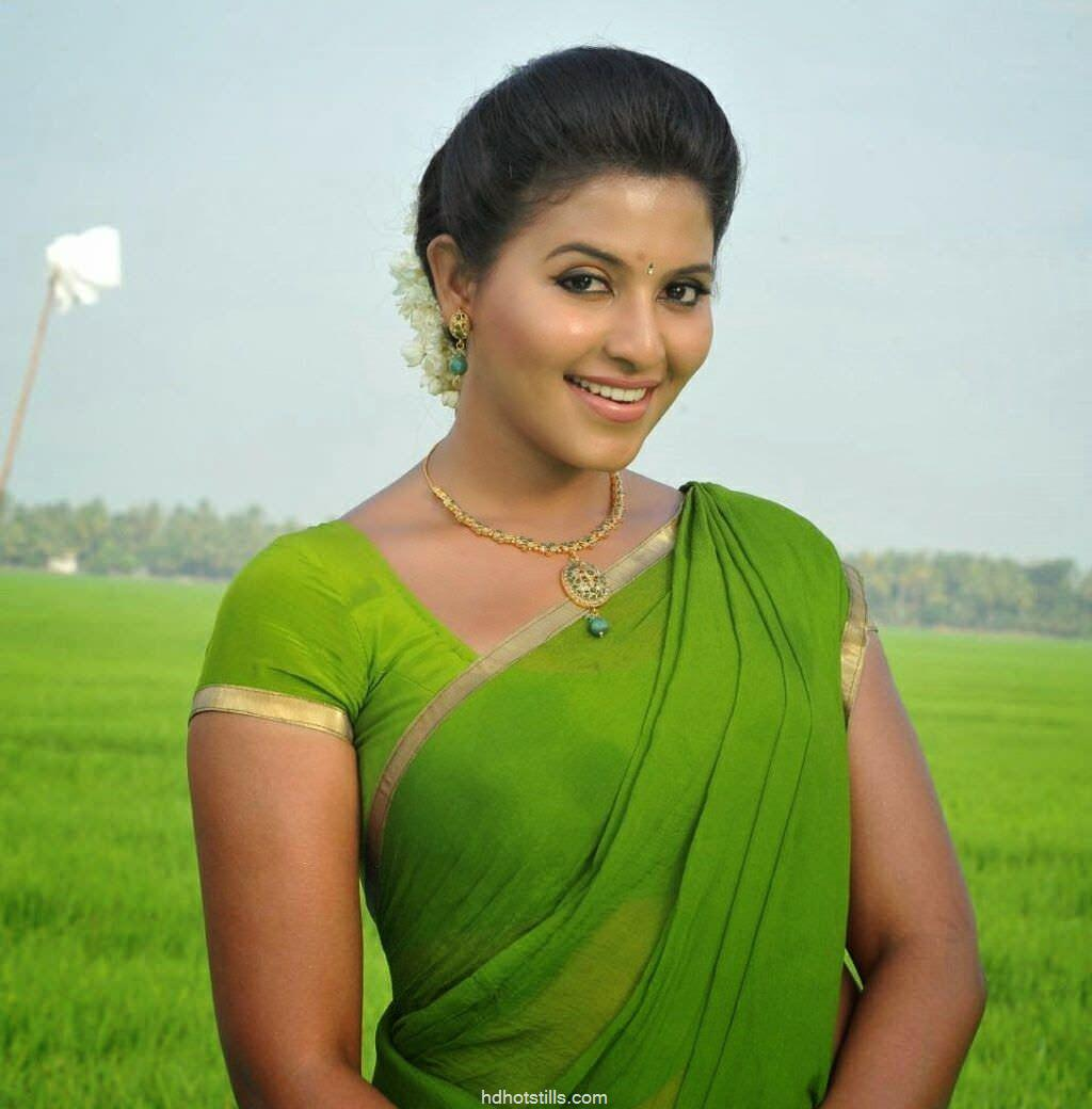 Actress Anjali Latest Photos In Saree
