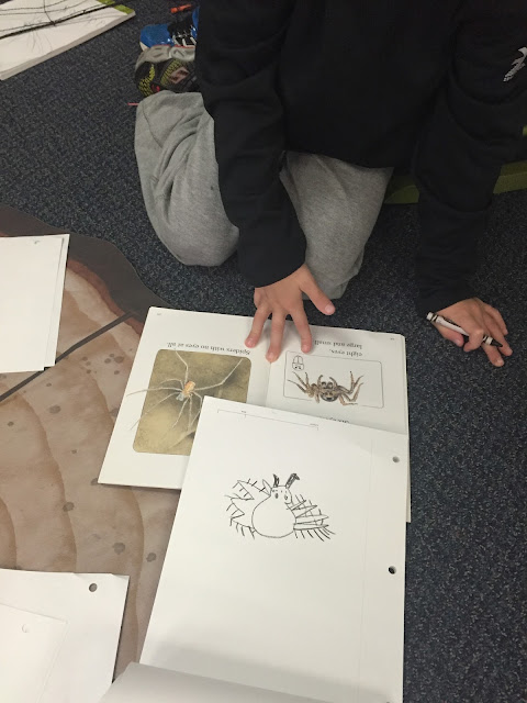 adding spiders to your science center for your classroom halloween party