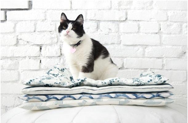 kedi yatağı nasıl yapılır