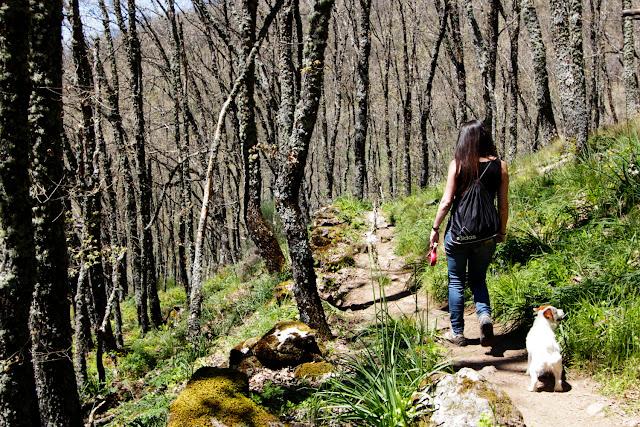 Lena y Amy caminando por un sendero en el valle del Ambroz