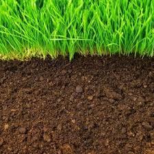 Air Tanah dan Kesuburan Tanah