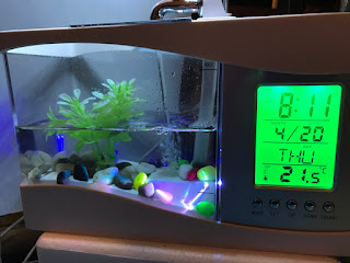 image, desk sized fish tank