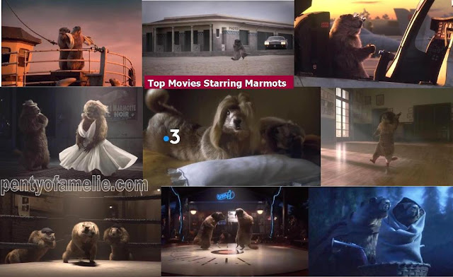 Funtastic French TV Idents related to Top Movies Starring Marmots