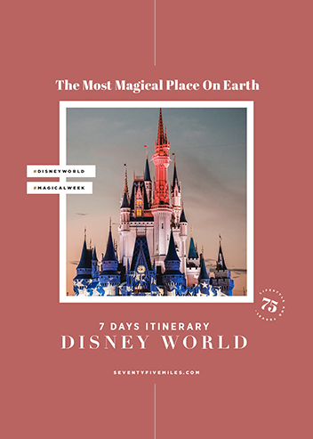 DISNEY WORLD - SEVEN DAYS ITINERARY